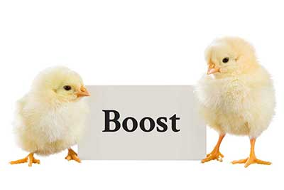 We expertly boost your business' presence